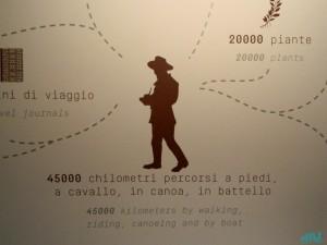 Il lungo percorso di Antonio Raimondi