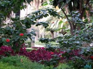 Giardini di Malaga