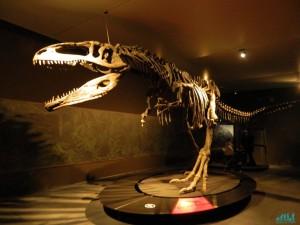 Dinosauri giganti dell'Argentina al Mudec-Milano