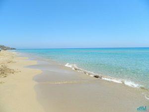 Cipro nord