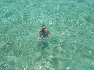 cipro nod