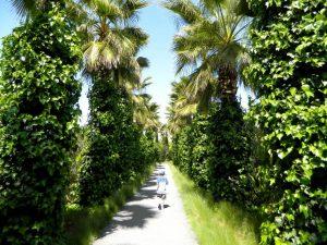 andre' heller a marrakech-anima garden