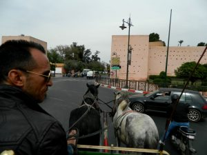 in carrozza verso la kasbah di marrakech