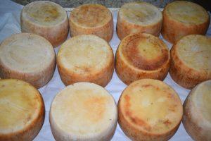 vacanze a milos: mangiare il formaggio di capra