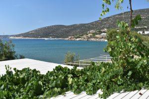 Cyclades studios e ristorante a Sifnos
