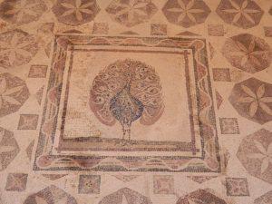area archelogica di paphos
