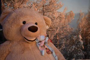 l'orso gigante del centro verde caravaggio