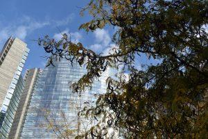 foliage a milano-gae aulenti