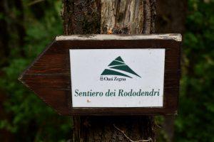 zegna percorso rododendri