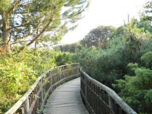 giardino botanico di Porto Caleri