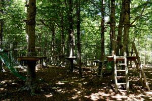 percorso acrobatico tra gli alberi