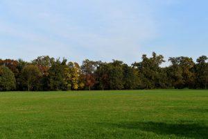 parco di monza in autunno