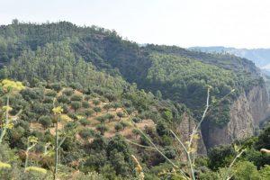 Il canyon di valli cupe