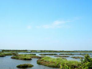 meraviglie del delta del Po