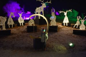 luci e suoni al festival di natale swarovski