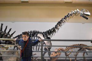 scienze naturali-musei per bambini a madrid