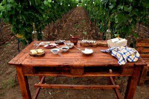 degustazioni di prodotti tipici a tropea presso furchì wine